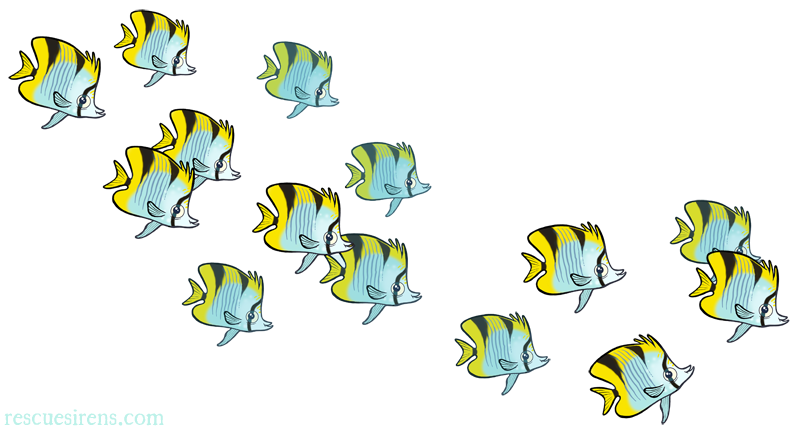 Butterfly fish drawn by Chris Sanders