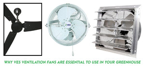 Why VES ventilation fans are ESSENTIAL to use in your greenhouse