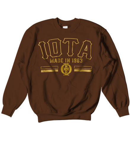 Iota Phi Theta School Daze Raglan - Letters Greek Apparel - Black Greek Paraphernalia - Divine Nine Greek Apparel
