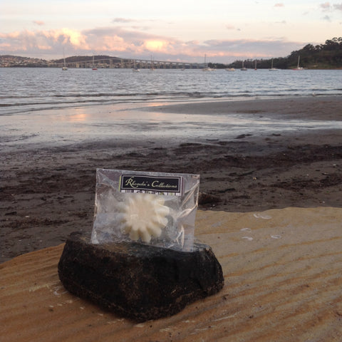 Tasmanian Hand Poured Soy Wax  Melt.  Tasmanian Sea Breeze