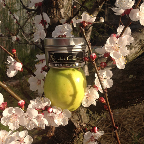 Tasmanian Hand Poured Soy Wax  Tin.  Crisp Apple