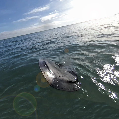 PPP Carbon Edge Bodysurfing handboards / handplane!  Triplane design slick and fun