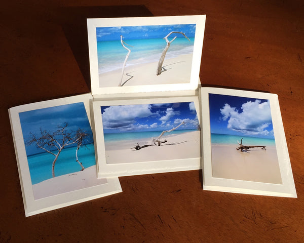 "The ""Barbuda"" Photo Card Collection"