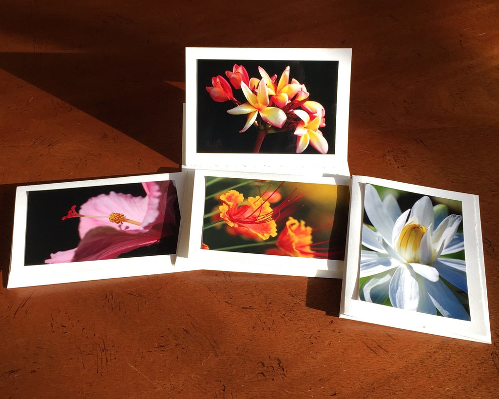 "The ""Tropical Flowers 2"" Photo Card Collection"