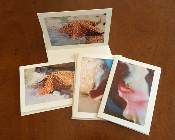 "The ""Sea Stars & Shells"" Photo Card Collection"