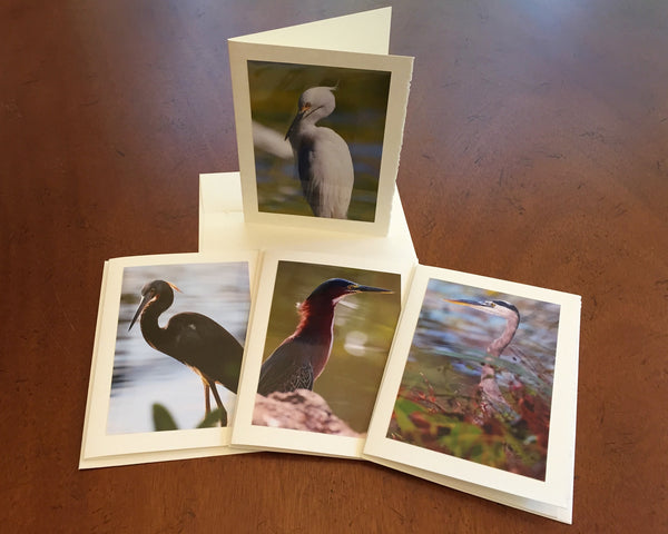 "The ""Egrets & Herons"" Photo Card Collection"