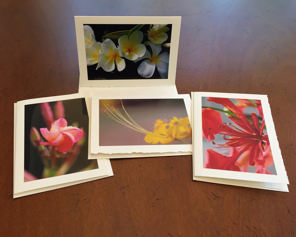 "The ""Tropical Flowers"" Photo Card Collection"