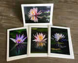 "NEW! The ""Pond Reflections 2"" Photo Card Collection"