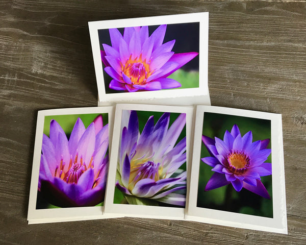 "NEW! The ""Purple Water Lily"" Photo Card Collection"