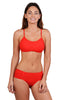 Finch Swim bikini bottom with soft side band, high waist, more coverage, full back