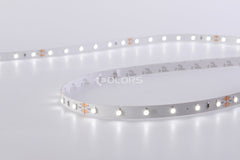 24V Indoor LED Strip Light - 6000K Cool White 33ft (10m)