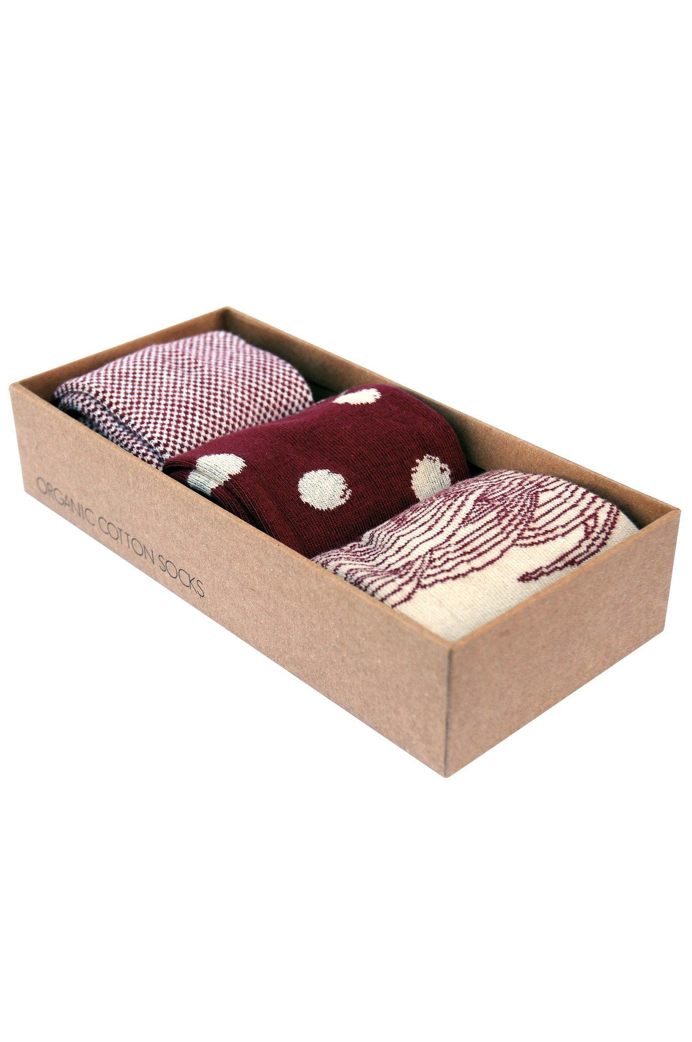 DOT WAVE Box Assorted Organic Cotton Socks Set - Komodo Fashion