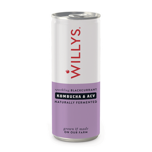 Willys | Willys Sparkling Blackcurrant Kombucha & Acv Drink | 1 x 250ml