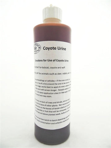 Coyote Urine - 16 oz