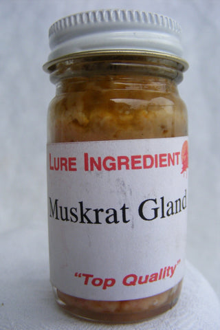 Muskrat Gland - 1oz Lure