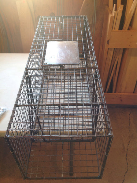 Koonce Cage Traps-Trap Shack Company