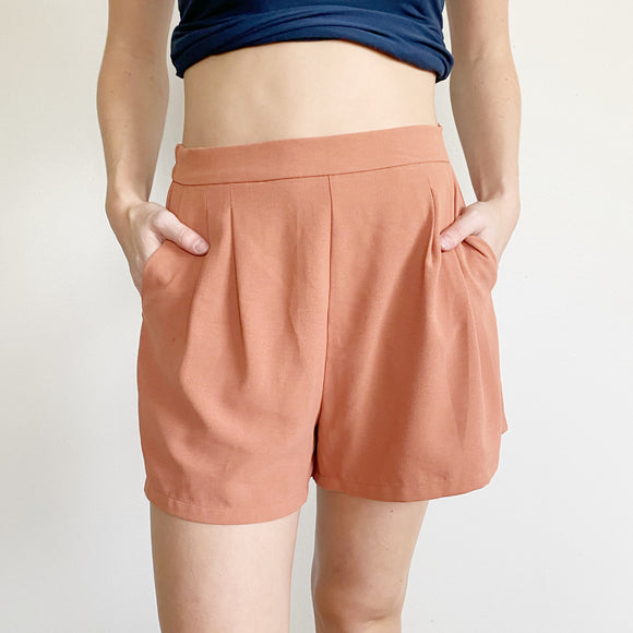 Nordstrom Rack Elodie High Waisted Shorts NWT Medium
