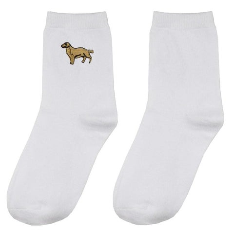 DOG SOCKS GOLDEN