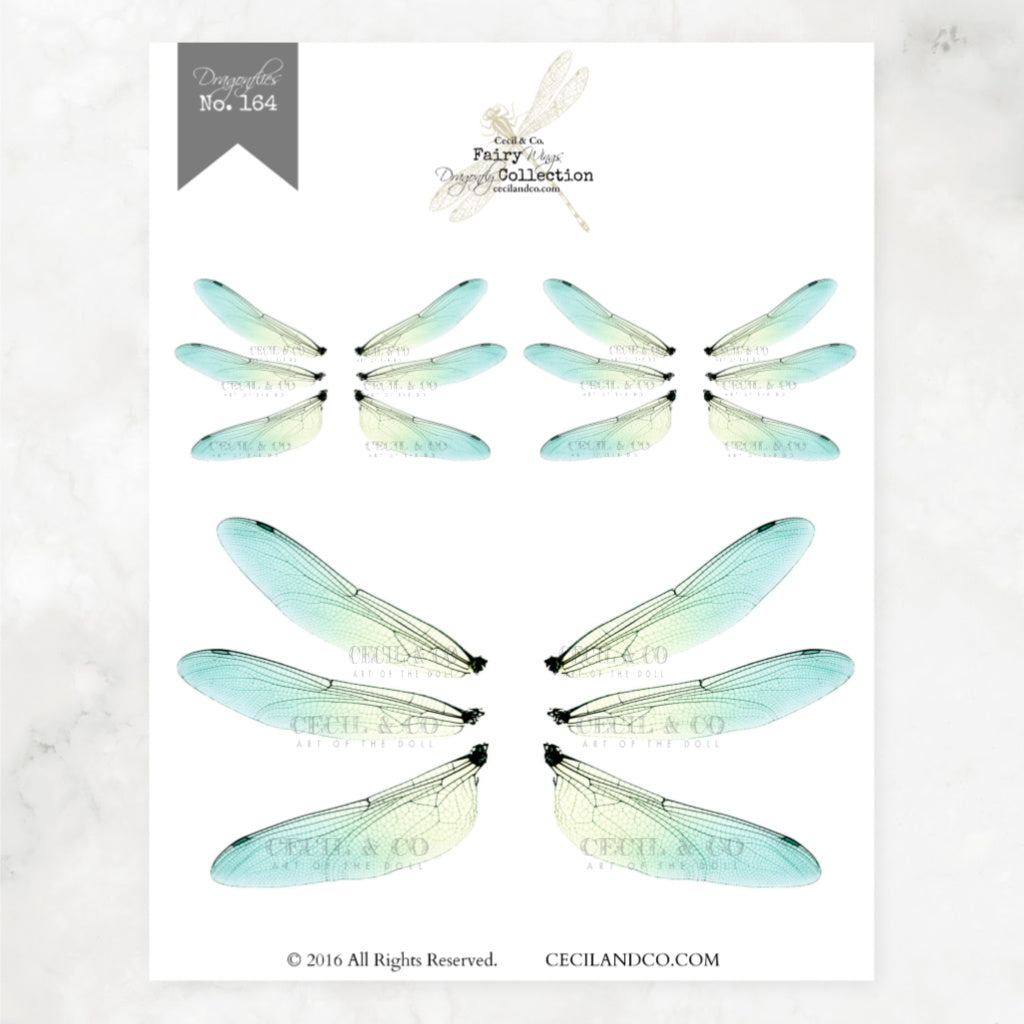 Digital Dragonfly Fairy Wings Collection No. 164