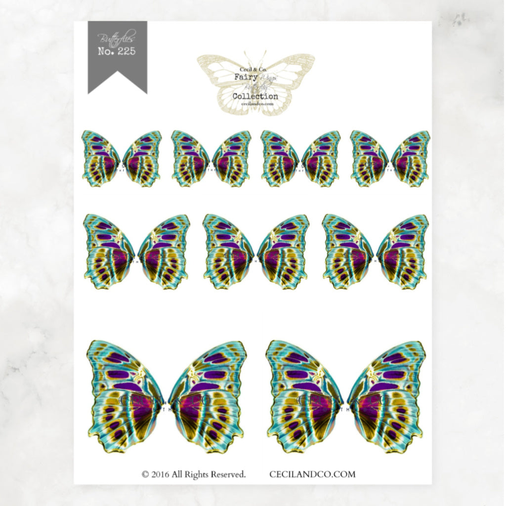 Digital Butterfly Fairy Wings Collection No. 225