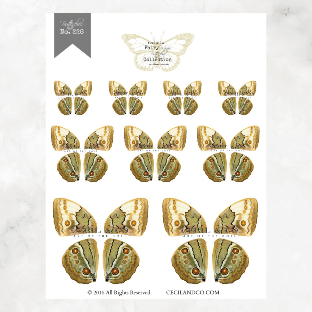 Digital Butterfly Fairy Wings Collection No. 228
