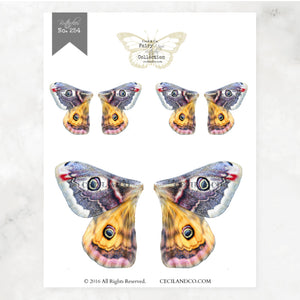 Digital Butterfly Fairy Wings Collection No. 254