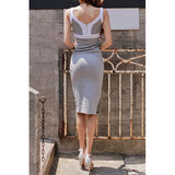 Sexy Plunging Neck Sleeveless Backless Color Block Bodycon Women's Dress