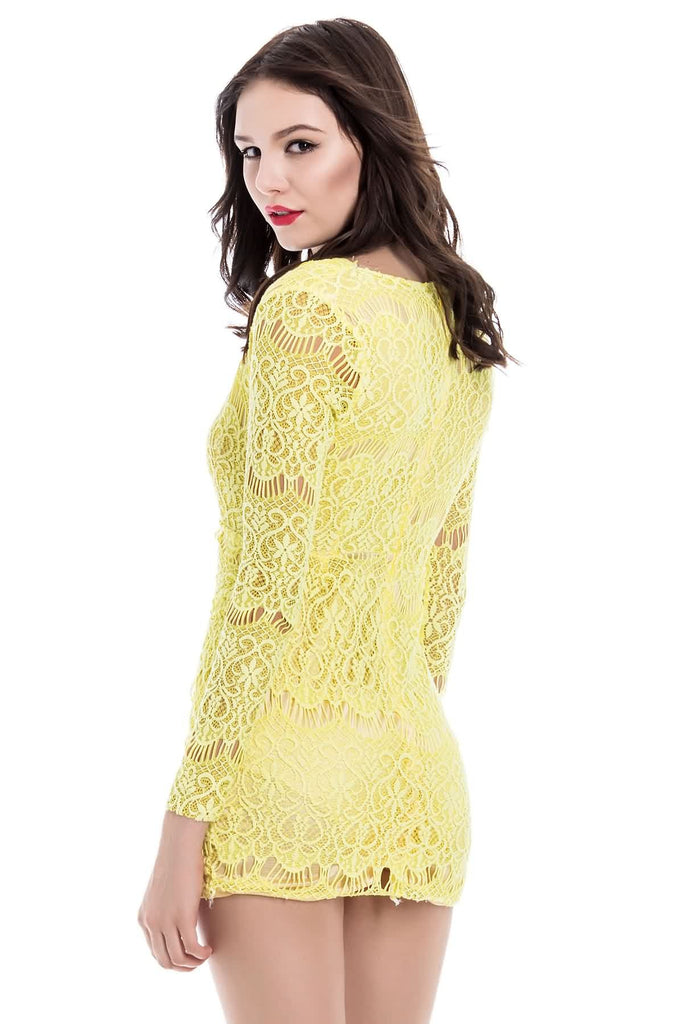 Sexy Style Plunging Neck Packet Buttock Long Sleeve Women's Lace Dress