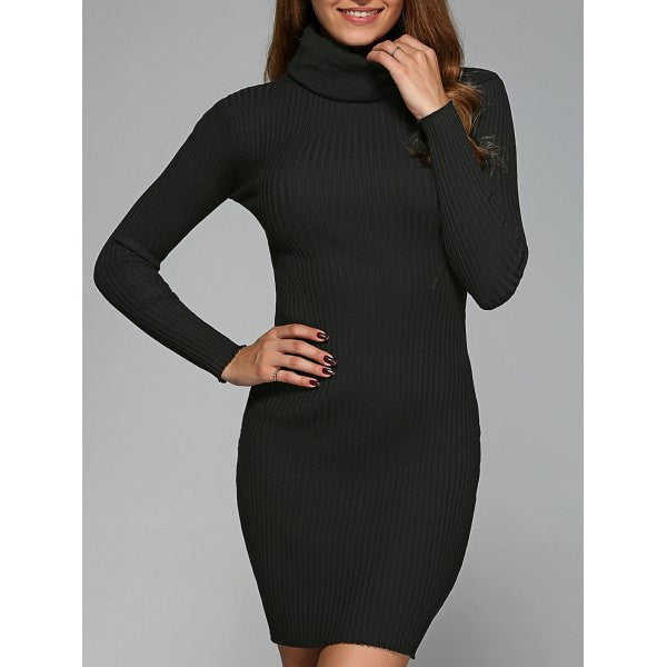 Turtle Neck Ribbed Skinny Stretchy Dress