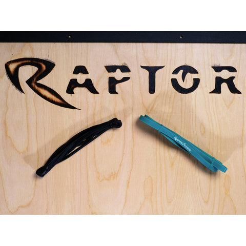Raptor Elastic Bands Lizard Set
