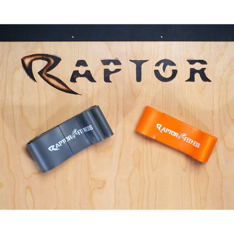 Raptor Elastic Bands Monster Set