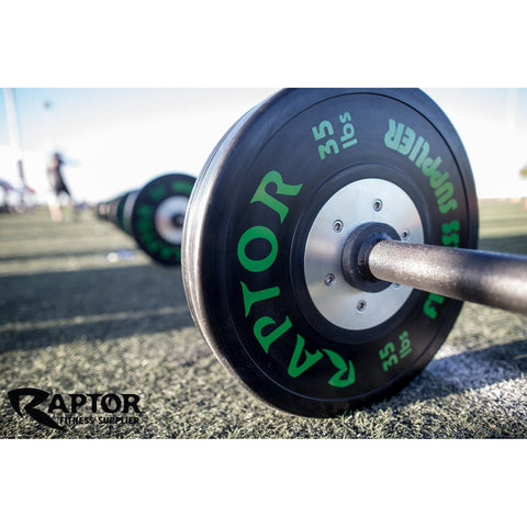 Raptor Training Bumper Plate LB