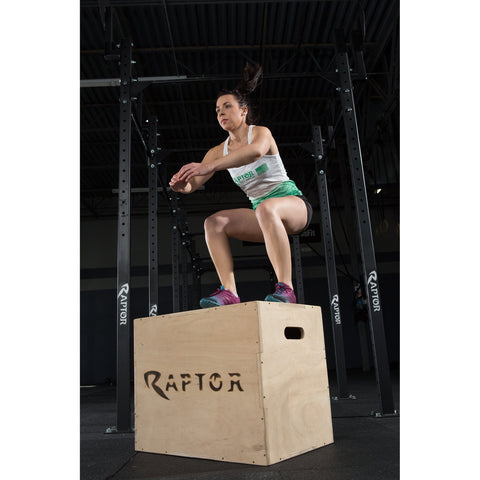 Image of Raptor Plyobox (Craft)
