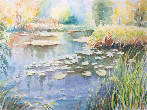 Water lilies - Stretched canvas