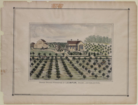Orange Grove and Residence of L.G. Butler
