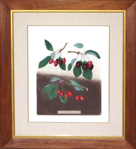 Framed-Bleeding Heart