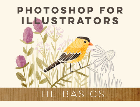 Photoshop for Illustrators: The Basics