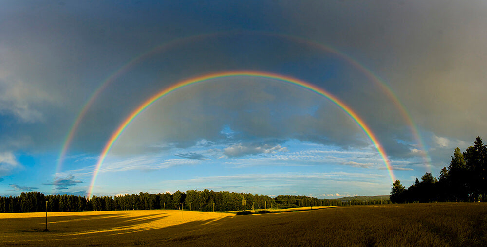How To Create A Double Rainbow Learn More At Rainbow Symphony