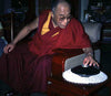 mirage 3d optical illusion dalai lama