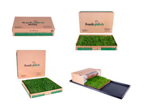 Puppy Potty Pads – Fresh Patch Real Grass