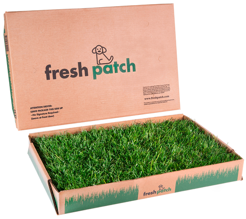 Attirant FRESH PATCH: The Official REAL GRASS Dog Potty Website