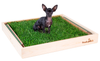 Pine Fresh Patch Puppy Pack with dog on grass