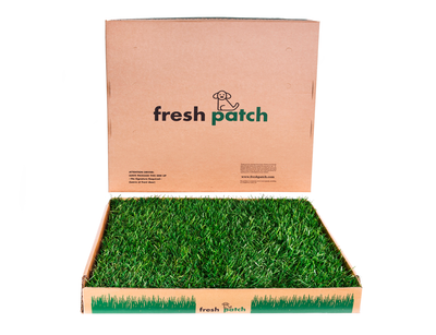 Fresh Patch (Large)