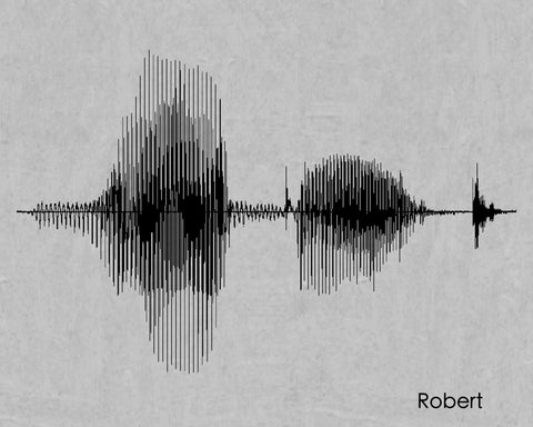 Robert Sound Wave Name Print - Created by SoundWaveArt.net