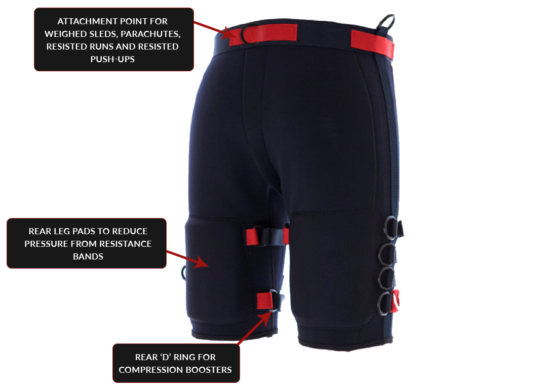 Apex Bionic Resistance Shorts Back