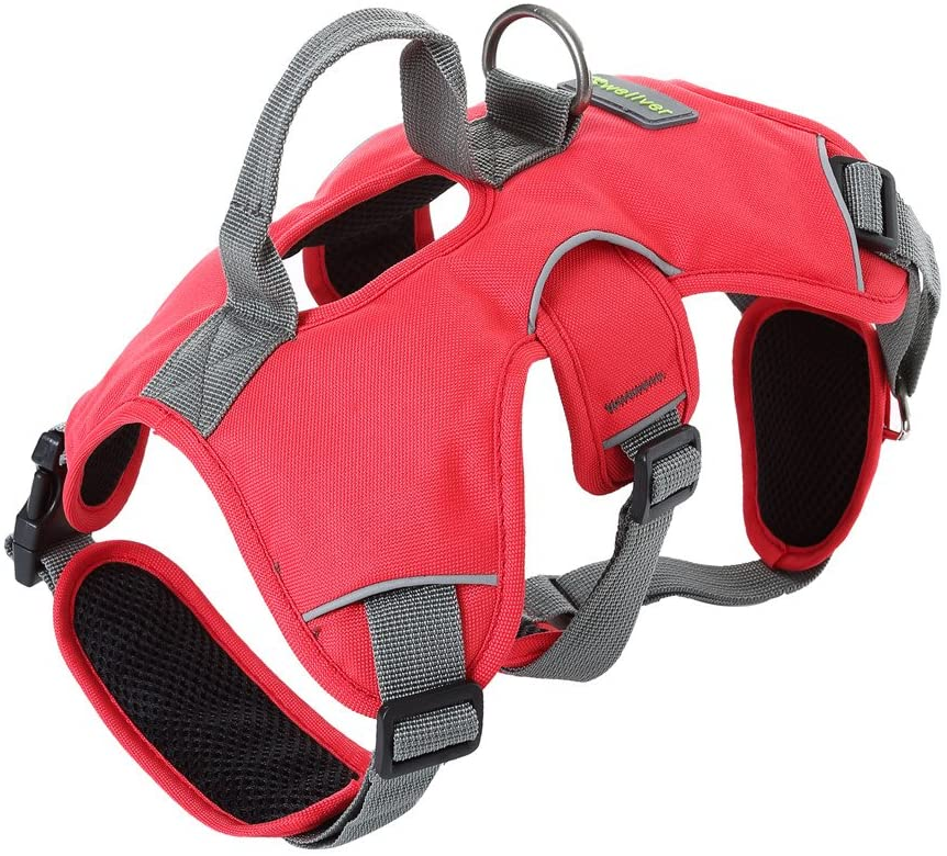 Pet Harness for Dogs Cats | Adjustable Soft Padded Vest - Large
