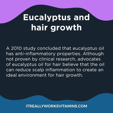 Eucalyptus Oil for Dandruff and hair growth