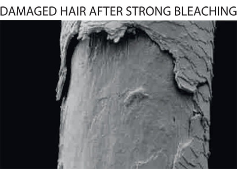 damaged hair after bleaching