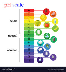 The Alkaline Diet and PH Scale