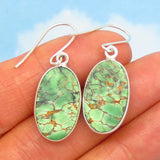Rare Australian Variscite Earrings - 925 Sterling Silver - Ear Wires or Leverbacks - 20 x 12mm Oval - Dangle - su281901-L-OV